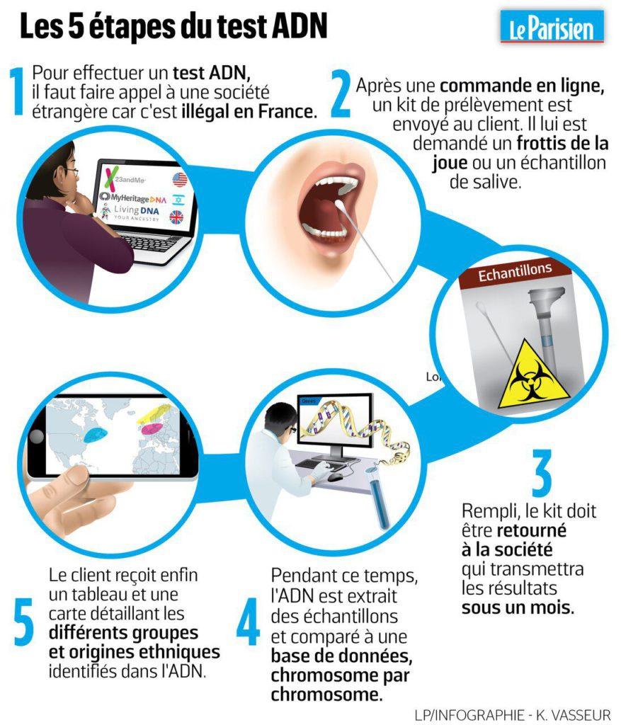 Les 5 étapes du test ADN
